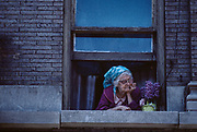 Old Woman in Window, Woman in window, New York City, New York, USA, May 1982