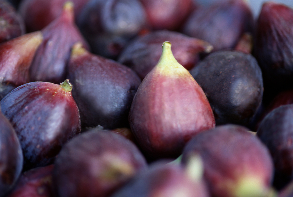 Close up selective focus photograph of a pile of Black Mission Figs