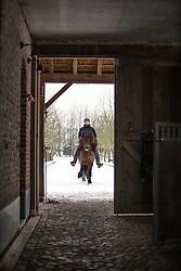 Rottiers Stijn (BEL) - Taktur Fra Tjarnarlandi<br /> Reportage Stal Rottiers - Bornem 2013<br /> © Dirk Caremans