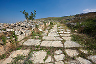 Picture of St Philip Gate road.  Hierapolis archaeological site near Pamukkale in Turkey. .<br /> <br /> If you prefer to buy from our ALAMY PHOTO LIBRARY  Collection visit : https://www.alamy.com/portfolio/paul-williams-funkystock/pamukkale-hierapolis-turkey.html<br /> <br /> Visit our TURKEY PHOTO COLLECTIONS for more photos to download or buy as wall art prints https://funkystock.photoshelter.com/gallery-collection/3f-Pictures-of-Turkey-Turkey-Photos-Images-Fotos/C0000U.hJWkZxAbg .<br /> <br /> If you prefer to buy from our ALAMY PHOTO LIBRARY  Collection visit : https://www.alamy.com/portfolio/paul-williams-funkystock/pamukkale-hierapolis-turkey.html<br /> <br /> Visit our TURKEY PHOTO COLLECTIONS for more photos to download or buy as wall art prints https://funkystock.photoshelter.com/gallery-collection/3f-Pictures-of-Turkey-Turkey-Photos-Images-Fotos/C0000U.hJWkZxAbg