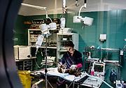 Oristano, Clinica Veterinaria due Mari, preparazione per un nuovo intervento  in sala operatoria