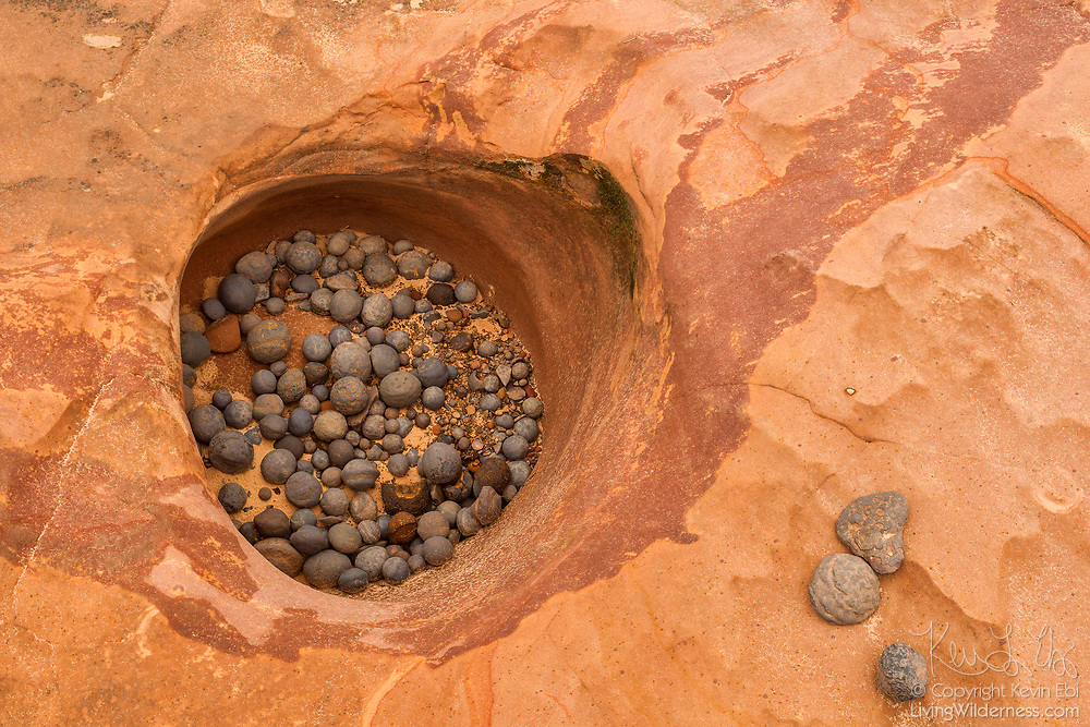 Dozens of iron concretions are trapped in a sandstone pothole in the Grand Staircase Escalante in southern Utah. These iron concretions formed naturally between 6 and 25 million years ago as water dissolved the iron pigment in the red sandstone in the area. The pigment flowed down through the now bleached sandstone and then solidified when it came in contact with oxygenated water, forming a new iron mineral called hematite between the grains of sandstone. Over time, the sandstone eroded away, leaving the more durable iron concretions behind. These largely spherical balls are composed of a hard outer layer of hematite covering a ball of pink sandstone. By volume, the sandstone makes up the majority of these iron concretions, though those found elsewhere in the Colorado Plateau may contain much more hematite. Scientists aren't sure why they form in spheres or if they need something in particular as a nucleus to start growing.