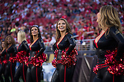 The San Francisco 49ers Gold Rush perform on the sidelines during a game against the Arizona Cardinals at Levi's Stadium in Santa Clara, Calif., on October 6, 2016. (Stan Olszewski/Special to S.F. Examiner)