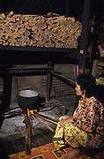 DAYAK COOKING MALAYSIA. Sarawak, Borneo, South East Asia. Cooking food from the forest. Tropical rainforest and one of the world's richest, oldest eco-systems, flora and fauna, under threat from development, logging and deforestation. Home to indigenous Dayak native tribal peoples, farming by slash and burn cultivation, fishing and hunting wild boar. Home to the Penan, traditional nomadic hunter-gatherers, of whom only one thousand survive, eating roots, and hunting wild animals with blowpipes. Animists, Christians, they still practice traditional medicine from herbs and plants. Native people have mounted protests and blockades against logging concessions, many have been arrested and imprisoned.