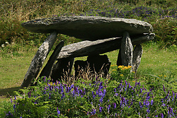 July 21, 2019 - Altar Dolmen And Wild Flowers Near Schull, County Cork, Ireland (Credit Image: © Peter Zoeller/Design Pics via ZUMA Wire)