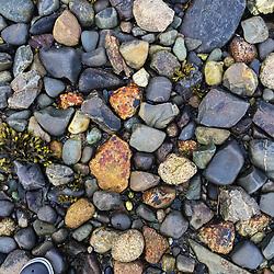 Rocks, Nautilus Island, Castine, Maine, US