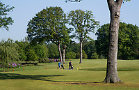 WINTERSWIJK -  Hole 4. Golf & Country Club Winterswijk, golfbaan De Voortwisch.     COPYRIGHT  KOEN SUYK