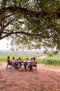 Brick House Vineyard and winery near Newberg, Oregon produces a variety of organic wines. Owners Doug Tunnell and Melissa Mills entertain guests under an old oak tree in the vineyard.