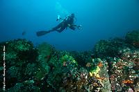Sandra Bessudo diving at Punta Vicente Rocha, Galapagos Islands.