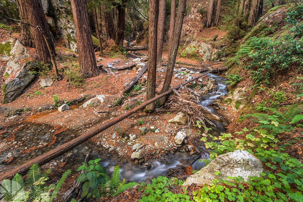 Limekiln Creek, along the Big Sur Coast, California