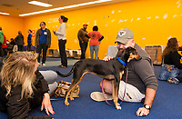 """For Diane Terrizzi and Hank Stuart the """"bonding"""" already started as they awaited the paperwork approval to adopt Shadow a 1 1/2 year old Pointer Doberman mix at the NH Humane Society's Adopt a thon on Friday morning at the Belknap Mall.  (Karen Bobotas/for the Laconia Daily Sun)"""
