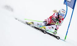 28.12.2014, Hohe Mut, Kühtai, AUT, FIS Ski Weltcup, Kühtai, Riesenslalom, Damen, 1. Durchgang, im Bild Eva-Maria Brem (AUT) // Eva-Maria Brem of Austria in action during 1st run of Ladies Giant Slalom of the Kuehtai FIS Ski Alpine World Cup at the Hohe Mut Course in Kuehtai, Austria on 2014/12/28. EXPA Pictures © 2014, PhotoCredit: EXPA/ JFK