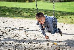 Young small boy swinging playground swing