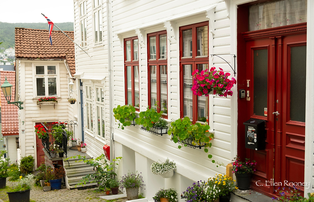 Timber houses in the Nordness section of Bergen, Norway, Europe