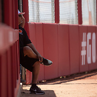 Gallup head coach Rayfert Spencer watches from the dugout during their NMAA Class 4A Softball State Championship game against the Artesia Bulldogs Saturday in Albuquerque.