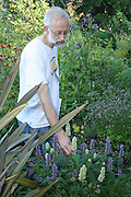 Stephen Barstow from Malvik outside Trondheim has between 1000 and 2000 different plants in his garden, most of them edible.