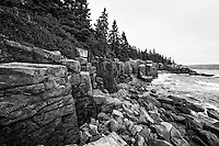 The rocky cliffs near Otter Cliff in Acadia National Park on a gloomy Fall day.  Black and White version.