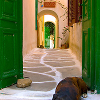 Mykonos.Greece. View of a sleeping brown and black dog sitting in front of the green doors and entrance to a hotel.