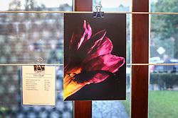 """PORTO ALEGRE, RS, BRASIL, 08-11-2017, 19h11'48"""":  Exposição do projeto Photo-Graphia - que mistura moda, design e fotografia - da fotojornalista Andréa Graiz, que reúne criações exclusivas de doze renomados joalheiros do cenário gaúcho e paulista, com base em estampas feitas a partir de suas fotografias, no Espaço Criativitá - Escola de Joalheria, de Lisia Barbieri, artista referência em criação autoral. Alice Floriano, Carlos Herrera, Cesar Cony, Cristina Espinosa, Glória Corbetta, Lisia Barbieri, Manoel Diógenes, Nadia da Cunha, Thiago Mateus, Valéria Sá, Viviê Studio e Weiss são os nomes por trás das peças exclusivas e autorais que compõe a exposição. Cada artista buscou na sua essência a inspiração e imprimiu em cada peça uma joalheria autoral - cada joia é o resultado de uma ideia concebida por meio de diferentes caminhos, isto torna cada peça uma verdadeira joia. O objetivo da mostra é criar uma arte única, contemporânea e moderna. O coquetel tem assinatura de Diego Andino Patisserie e Maison Forestier espumantes, com assessoria de comunicação da Re-paginada. (Foto: Agência Preview) © 08NOV17 Agência Preview - Banco de Imagens"""