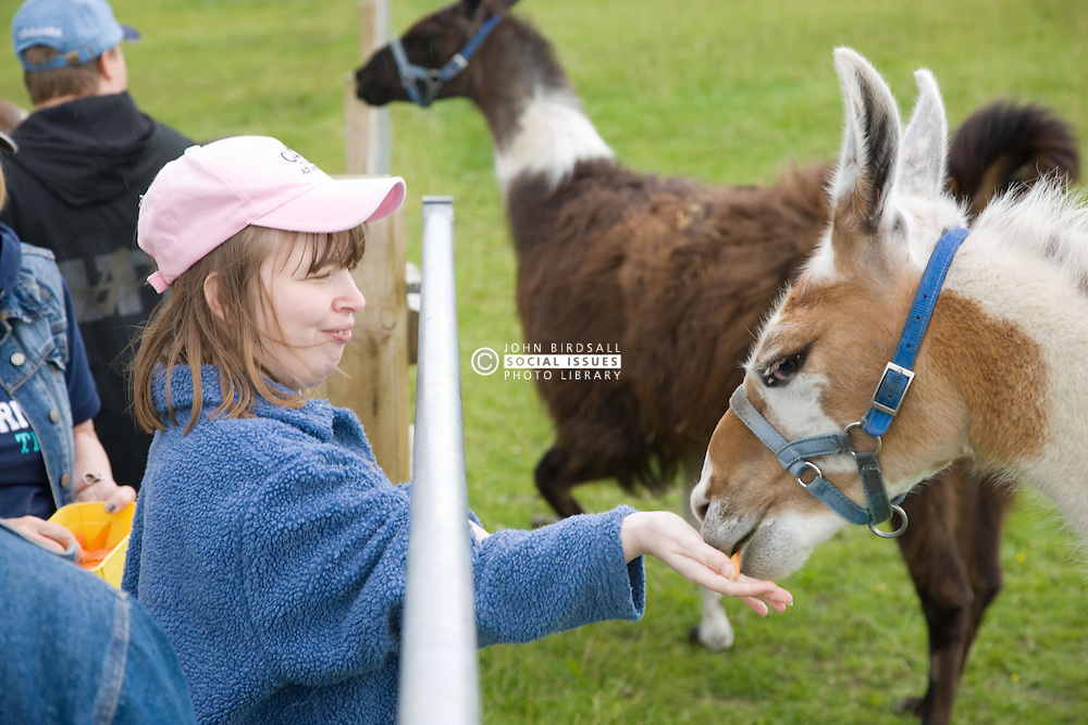 Young woman with learning disabilities on a trip to an animal centre feeding the resident llamas,