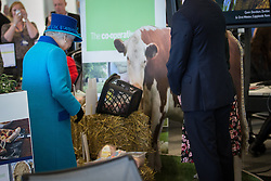 © Licensed to London News Pictures . 14/11/2013 . Manchester , UK . The Queen (in blue) looks a produce . Queen Elizabeth II and the Duke of Edinburgh visit the Coop building at 1 Angel Square , Manchester , this morning ( 14th November 2013 ) . Photo credit : Joel Goodman/LNP