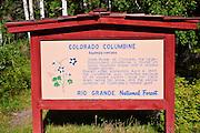 Colorado Columbine interpretive sign, Rio Grande National Forest, Colorado