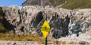 A yellow sign warns of glacier ice falling, creating a wave, and submerging a person in dangerous water, at Fox Glacier, South Island, New Zealand. As of 2012, both the Fox and Franz Josef Glaciers are more than 2.5 kilometers (1.6 miles) shorter than a century ago. Fox Glacier retreated throughout most of the last 100 years, advanced from 1985-2009, then began retreating again. In 1990, UNESCO honored Te Wahipounamu - South West New Zealand as a World Heritage Area. Panorama stitched from 2 overlapping images.
