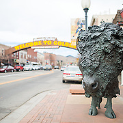 A statue of a buffalo in the main street of Golden, Colorado, just outside Denver at the eastern edge of the Rocky Mountains.