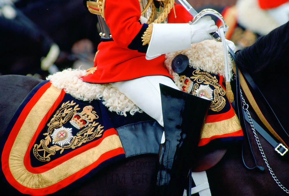 Close up detail of the uniform and tack of a mounted guardsman of the Lifeguards at the Trooping the Colour.ceremony, London