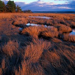 Tidal Estuary. Wetlands. April. Salt Marsh. Near Moody Point.  Great Bay.  Durham, NH