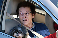 Carolyn Rader, of Northampton, holds her dog Zoe while sitting in her car as Bethany Wesleyan Church holds their Sunday worship service Mar. 22, 2020, at Becky's Drive-In in Walnutport, Pennsylvania. Concerns over the coronavirus have closed churches in an effort to avoid gatherings of large crowds.