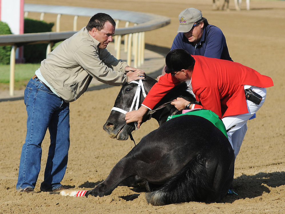 Track personnel try to hold down Eight Belles after the 134th Kentucky Derby Saturday, May 3, 2008, at Churchill Downs in Louisville, Ky. Eight Belles was euthanized after breaking both front ankles following a second-place finish in the Kentucky Derby. (AP Photo/Brian Bohannon)