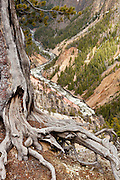 Yellowstone River flowing through the Grand Canyon of the Yellowstone