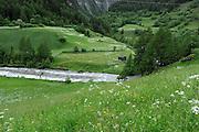 Tal in der Nähe von Berg, Nationalpark Hohe Tauern, Osttirol in Österreich