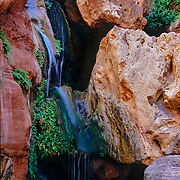 Elves Chasm deep within the inner canyon, Grand Canyon National Park, AZ.