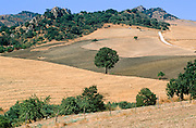 Parched late summer landscape near Nicosia, central Sicily
