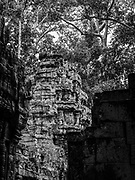 Image of Ta Prohm Temple, the photogenic temple at Angkor Wat Archeological Park, Siem Reap, Cambodia.