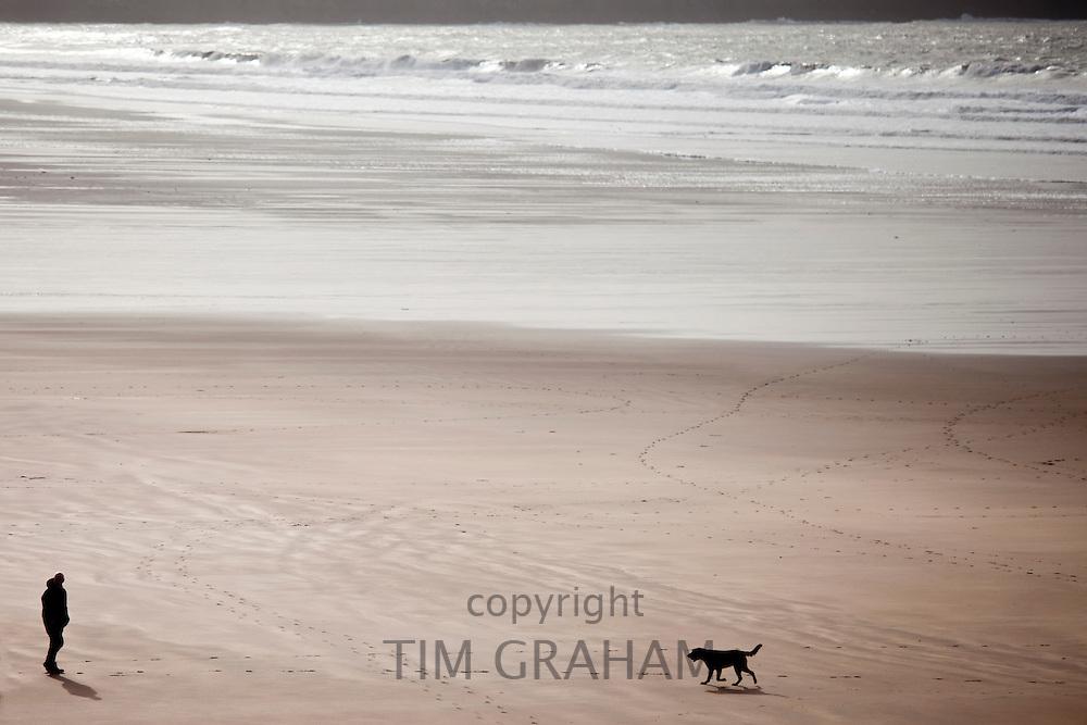 Man walking Labrador Retriever dog on the beach at Woolacombe, North Devon, UK