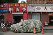 Camouflage cover disguise for vehicle, Shanghai China