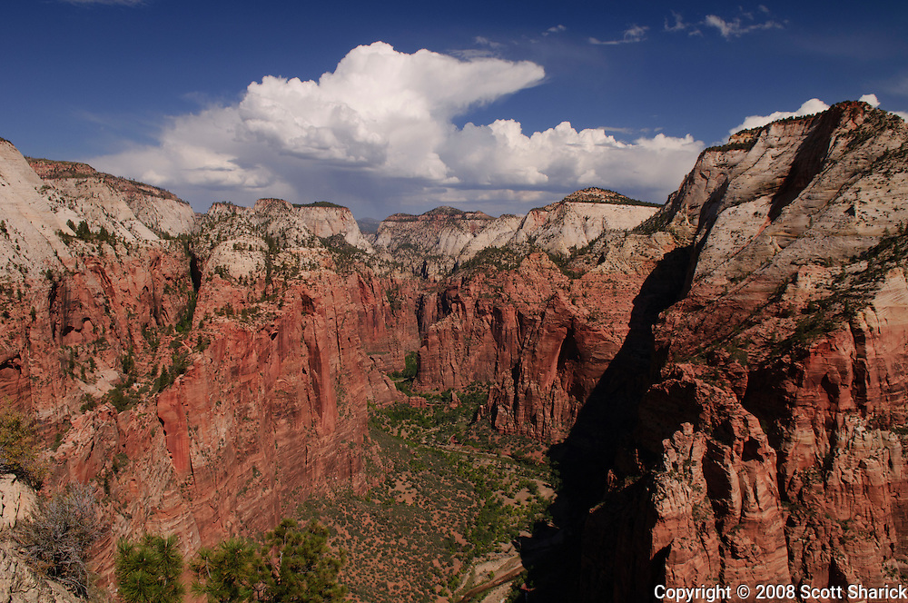 The view from Angels Landing in Zion National Park in Utah. Missoula Photographer