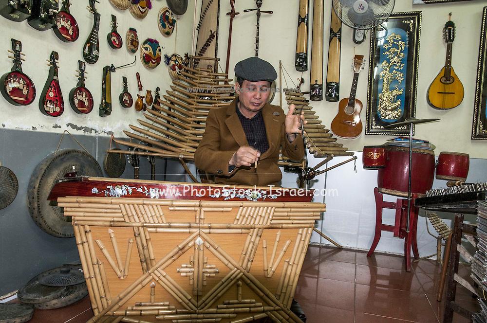 Traditional Music instrument, Hanoi, Vietnam
