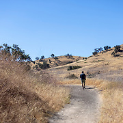 A man walks the fireroad near the Victory Trailead to the Santa Monica Mountains.