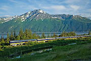 Alaska, Bird Point, Alaska Railroad making it's way along turnagain Arm in early summer