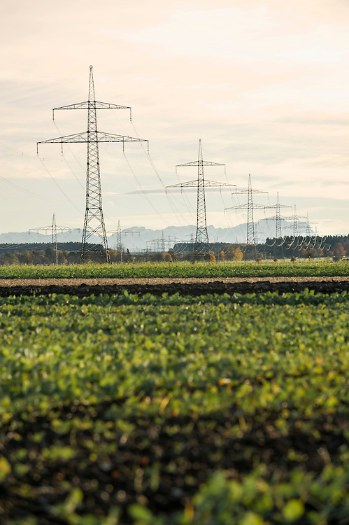 View of power pole and field, Bavaria, Germany