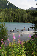 Fishing at Russian and Kenai River, Alaska, USA<br /> <br /> Photographer: Christina Sjögren<br /> <br /> Copyright 2019, All Rights Reserved