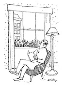 (A man is distracted from his book by a cat at his window - in a tower block!)