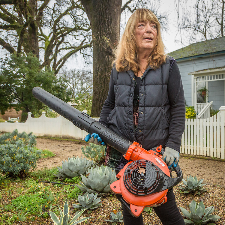 """""""I have four 150 year old oak trees on my property and they drop leaves and branches year 'round.  This is getting old.""""  -Nanci M. Smith takes a break from blowing twigs off her lot at the corner of Silver and Cedar Streets in Calistoga"""