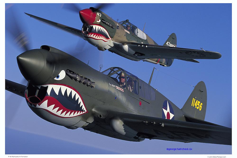 P-40 Warhawks, aerial