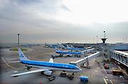 Nederland, Schiphol, 8-9-2006 Diverse vliegtuigen van de KLM op het platform van luchthaven Schiphol.  Foto: Flip Franssen