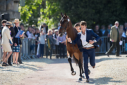 Burton Christopher, (AUS), Nobilis<br /> CCI4* - Mitsubishi Motors Badminton Horse Trials 2016<br /> © Hippo Foto - Jon Stroud<br /> 06/05/16